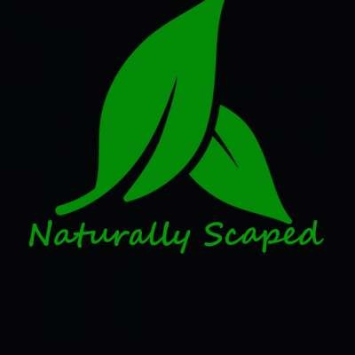 NaturallyScaped