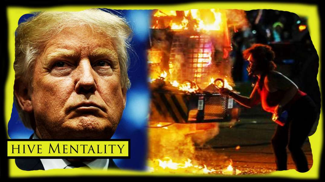 Trump Assassination Scare & Video Game Lounge Destroyed