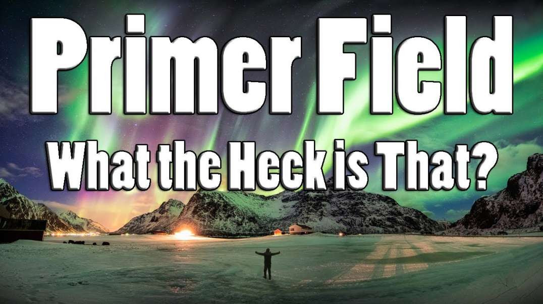 The PrimerField technology - What the Heck is That?
