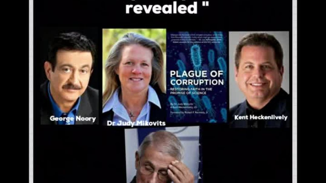 PLAGUE OF CORUPTION by Dr Judy Mikovits