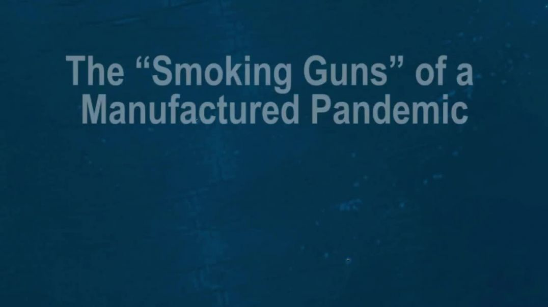The 'Smoking Guns' of a Manufactured Pandemic - Kristina Borjesson and Prof