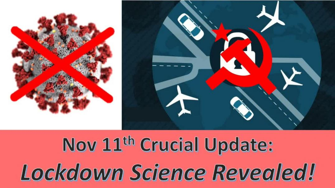 """Ivor Cummins: Beyond Crucial Update on Viral Issue - and Lockdown """"Science""""!"""