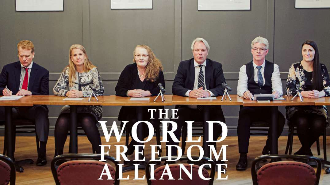 The first meeting of the World Freedom Alliance 2020, with professor dolores cahill, heiko shoning,