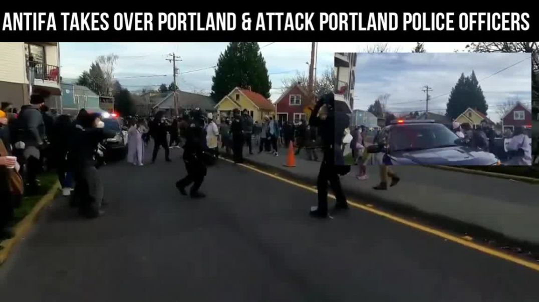 Antifa attacking Portland Police Officers