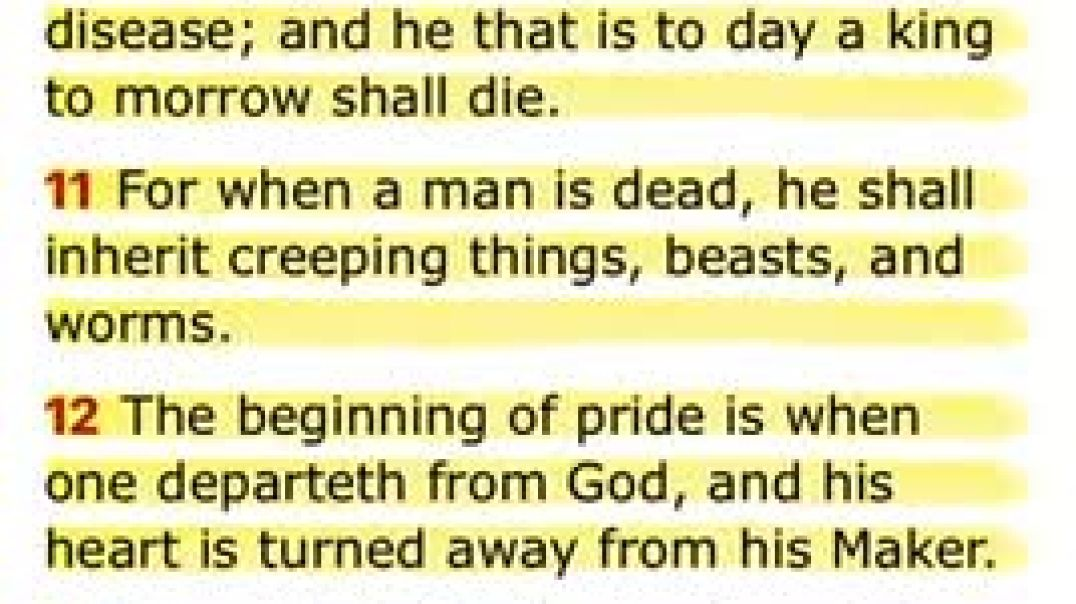 PRIDE SHALL BE YOUR DOWNFALL