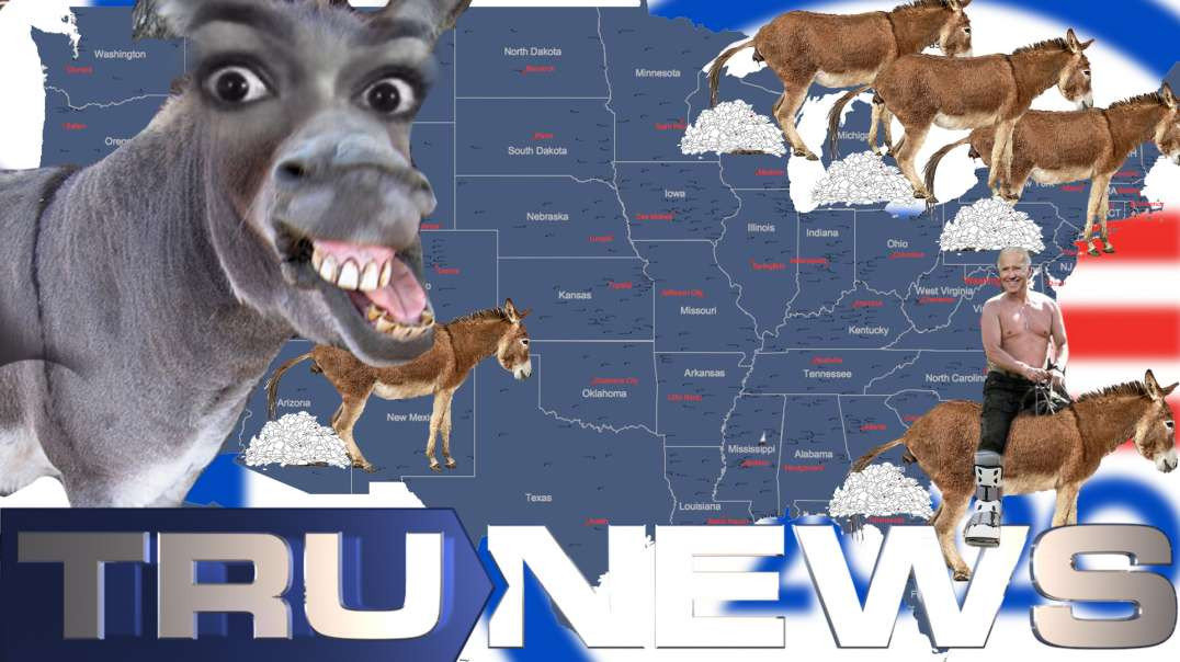 Dem Donkey Dumps - News Blackout on Mysterious Early-Morning Vote Surges in Swing States