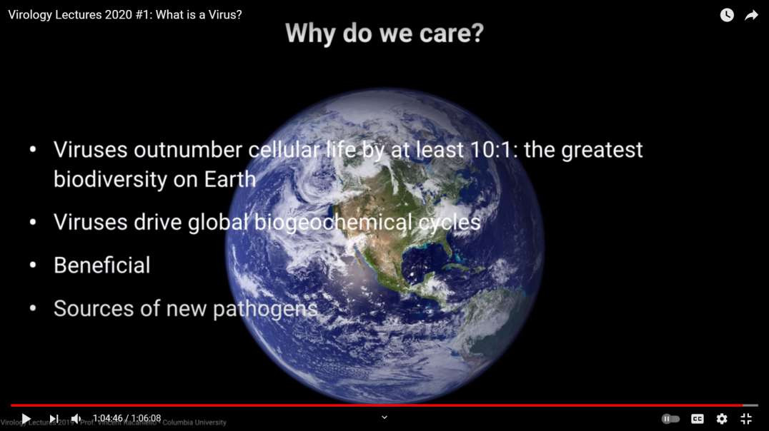 What Is A Virus (why was I never properly told about them!) - 2020 Columbia University
