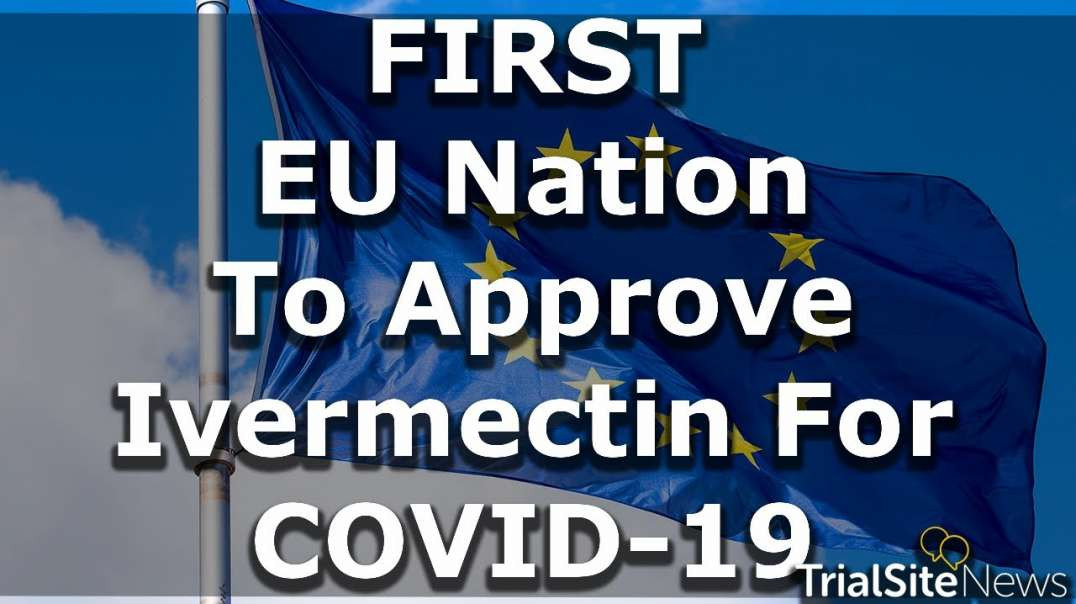 First EU Nation To Approve Ivermectin For Covid-19!  Slovakia = 1,  NWO = 0