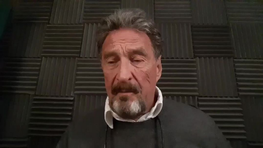 John MCafee - Who Is The Deep State