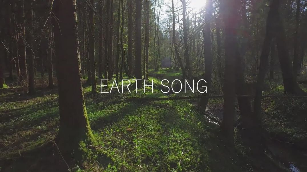 """""""EARTH SONG"""" - ORCHESTRAL COVER"""