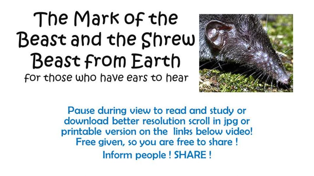 The Mark Of the Beast and the Shrew Beast - Covid-19 vaccine is marked as UN-19