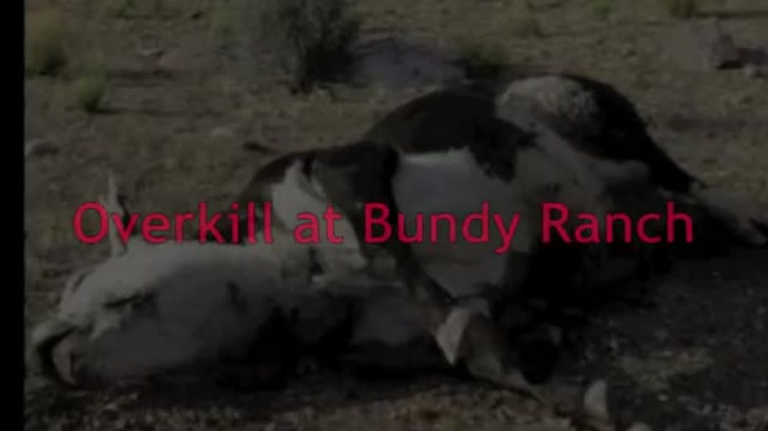 Did a Shoot to Kill and Cover-Up Policy Set the Stage for The Bundy Ranch Standoff
