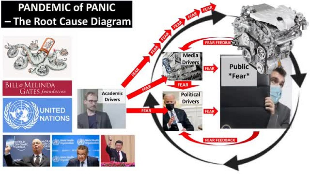 Ivor Cummins | This Pandemic of Panic - EXPLAINED SIMPLY - in 3 minutes flat!