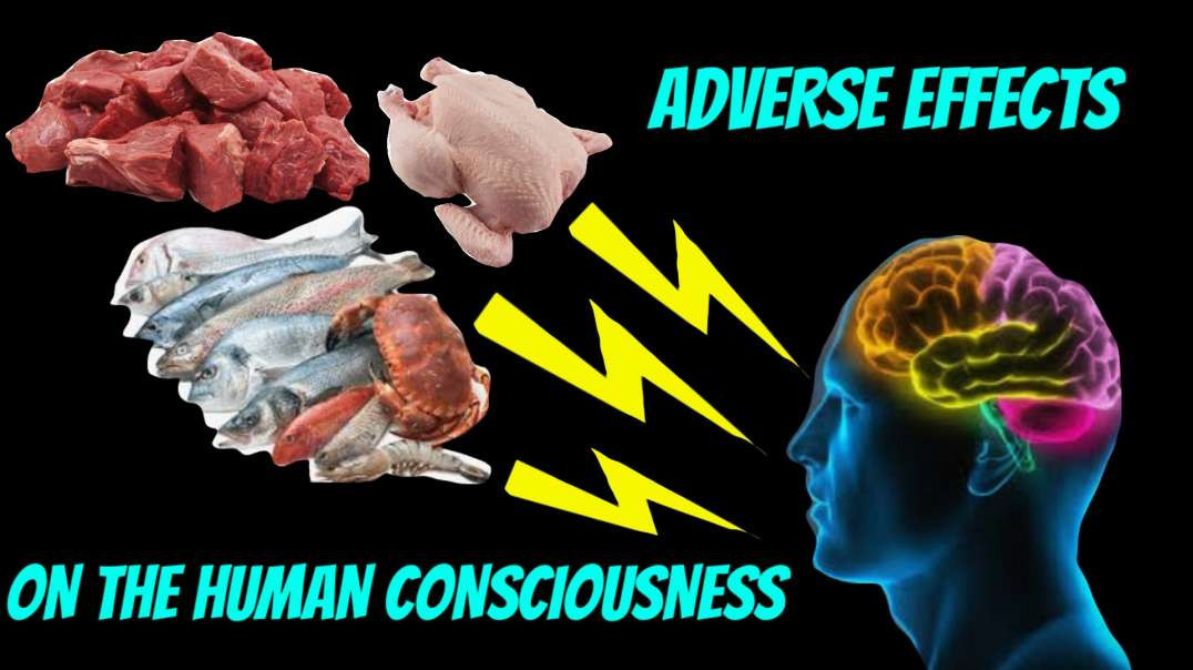 Adverse EFFECTS of a MEAT based diet on the HUMAN CONSCIOUSNESS