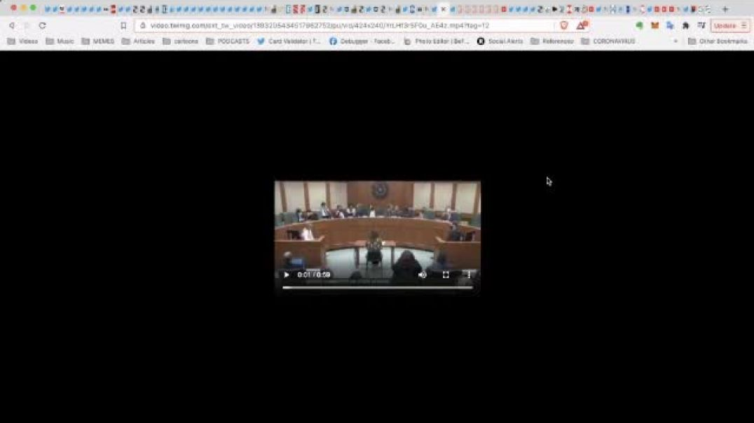 Why did twitter delete this Senate Committee on State Affairs meeting
