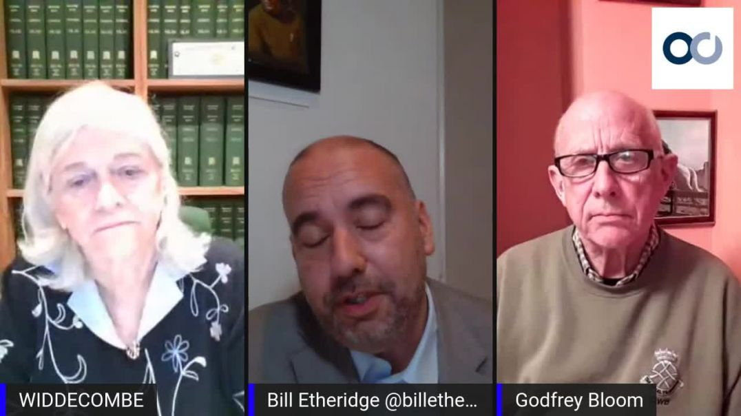 Pandemic Statistics with Ann Widdecombe, Godfrey Bloom & Bill Etheridge
