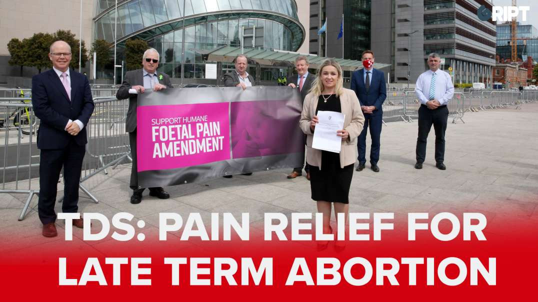 "WATCH: ""Humane"" bill proposes pain relief for unborn babies in late-term abortion."