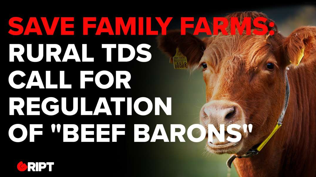 """SAVE FAMILY FARMS: Rural TDs call for regulation of """"Beef Barons"""""""