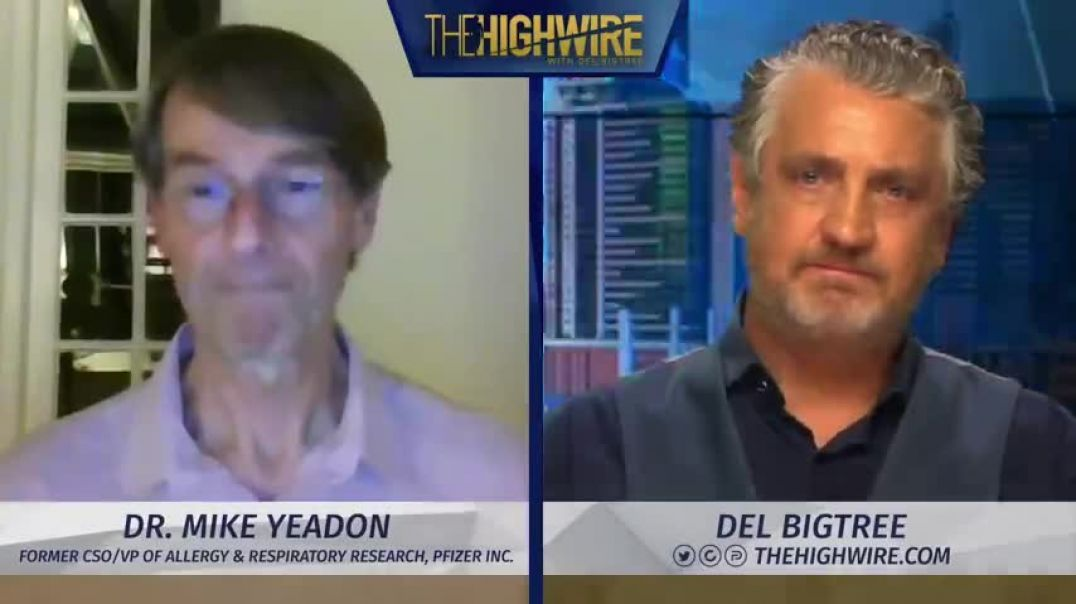 Dr Mike Yeadon | Possible Covid Fraud | The Highwire June 10, 2021