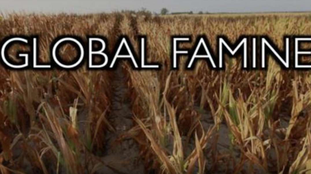 Global Famine: Why? Bioengineered Tiny Humans for a Zero Carbon Future