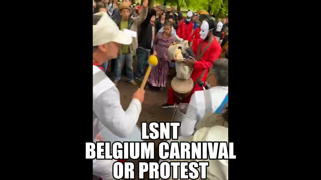 Protest or Carnival Belgium The People Stand Together