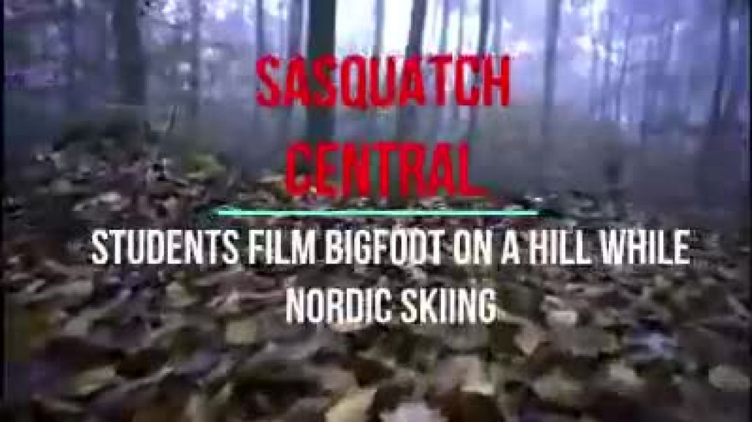 STUDENTS FILM BIGFOOT ON A HILL WHILE NORDIC SKIING - ANALYSIS