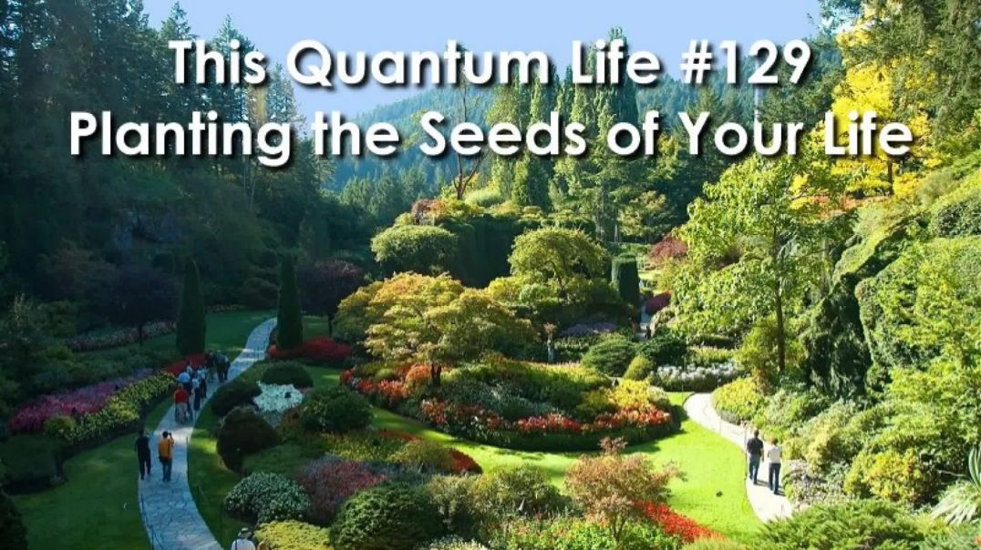 This Quantum Life #129 - Planting the Seeds of Your Life