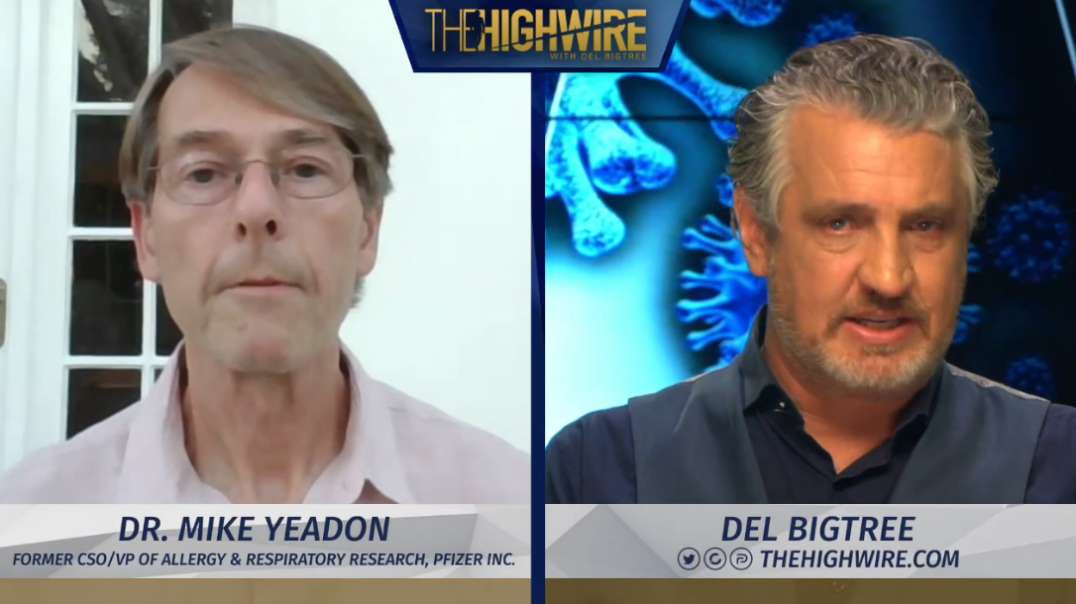 Dr Mike Yeadon IN HARM'S WAY. Be Afraid Of Government Not Covid. TheHighWire.com