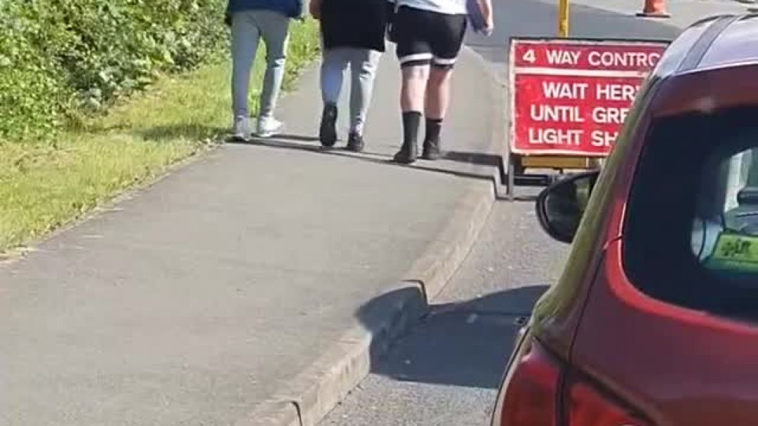 Brainwashed Herd of Sheep Wait Pathetically at The Traffic Lights