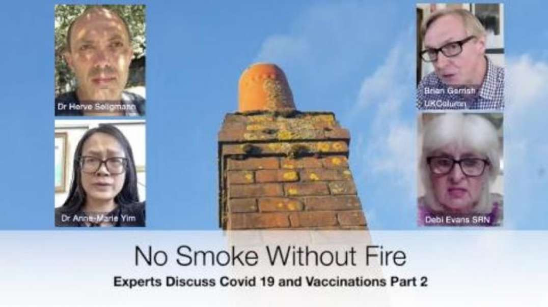 NO SMOKE WITHOUT FIRE PART 2: INTER'L SCIENTIFIC EXPERTS DISCUSS COVID VACCINE STATS