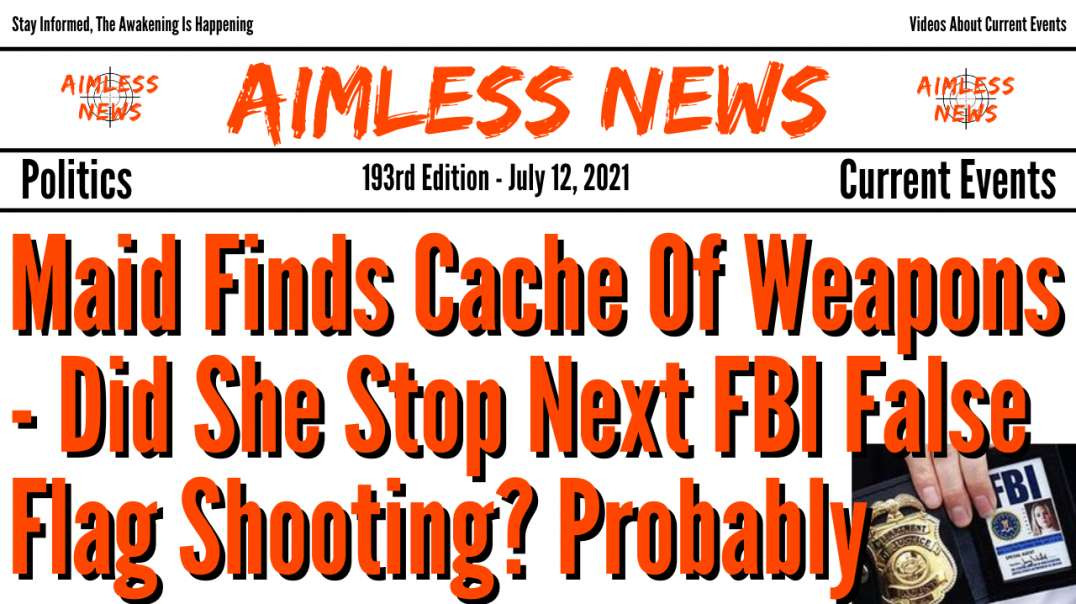 Maid Finds Cache Of Weapons - Did She Stop Next FBI False Flag Shooting? Probably