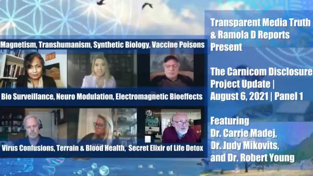 Multi-Pronged Attack on Human Health | Drs. Madej, Mikovits & Young