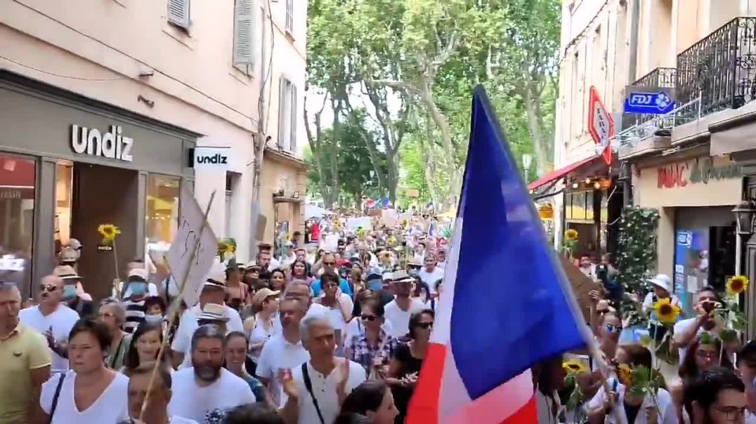 French citizens call for Macron's resignation
