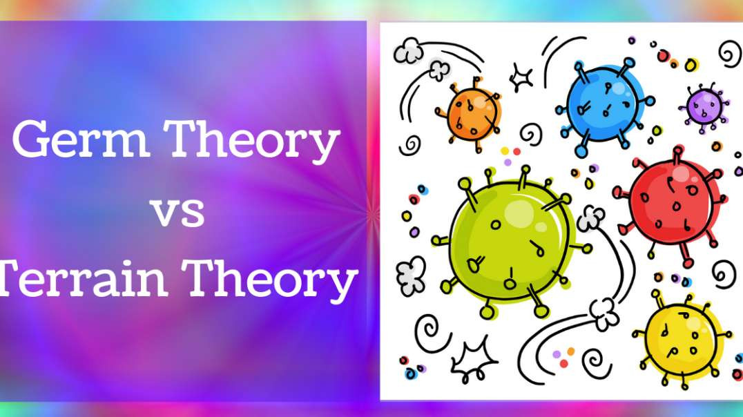 A quick introduction-the Germ Theory versus the Terrain Theory of disease