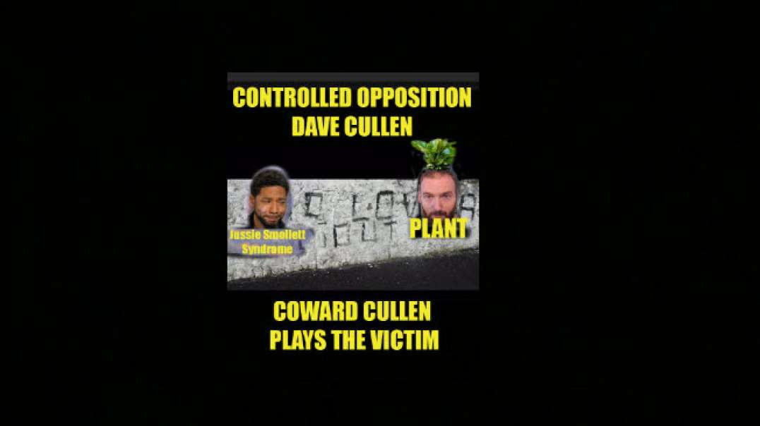 Controlled Opposition Dave Cullen panics and runs to the Gardai