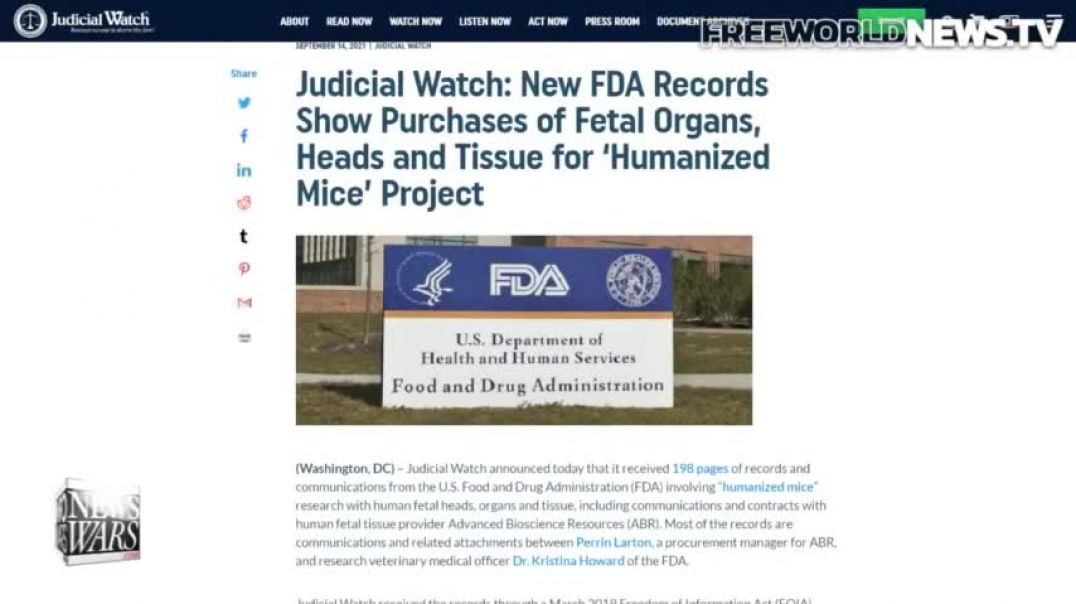 FDA Records: Fetal Body Parts Sold for Human Animal Hybrid Project