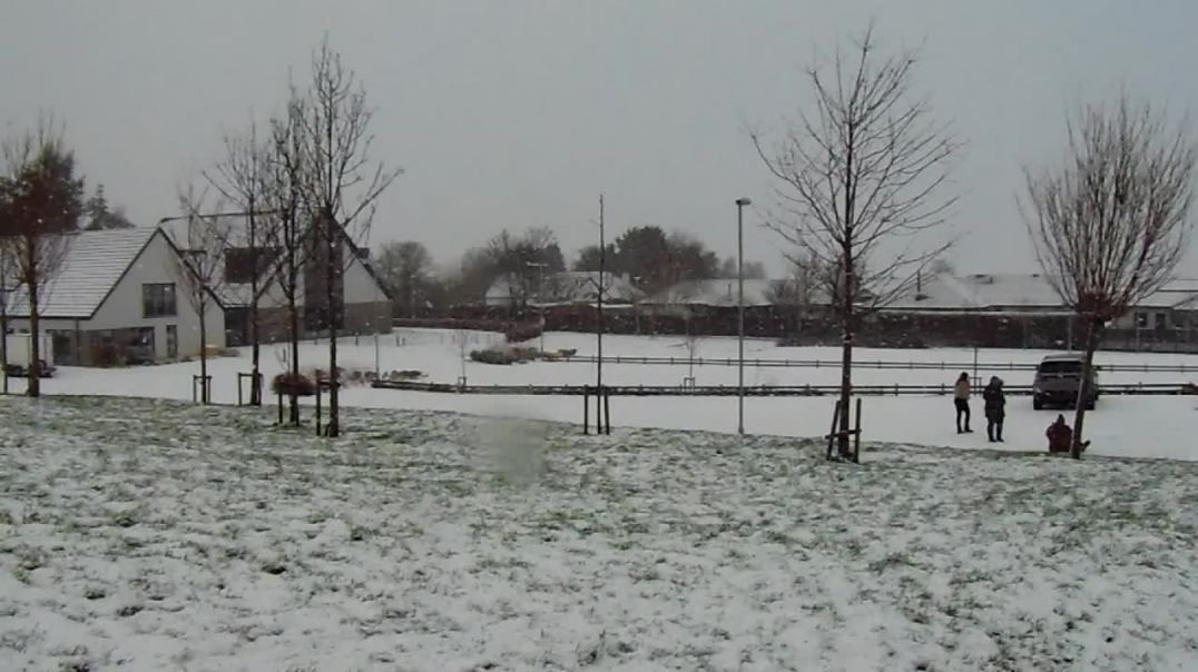 Snow from last year (2020 just shortly after Christmas)