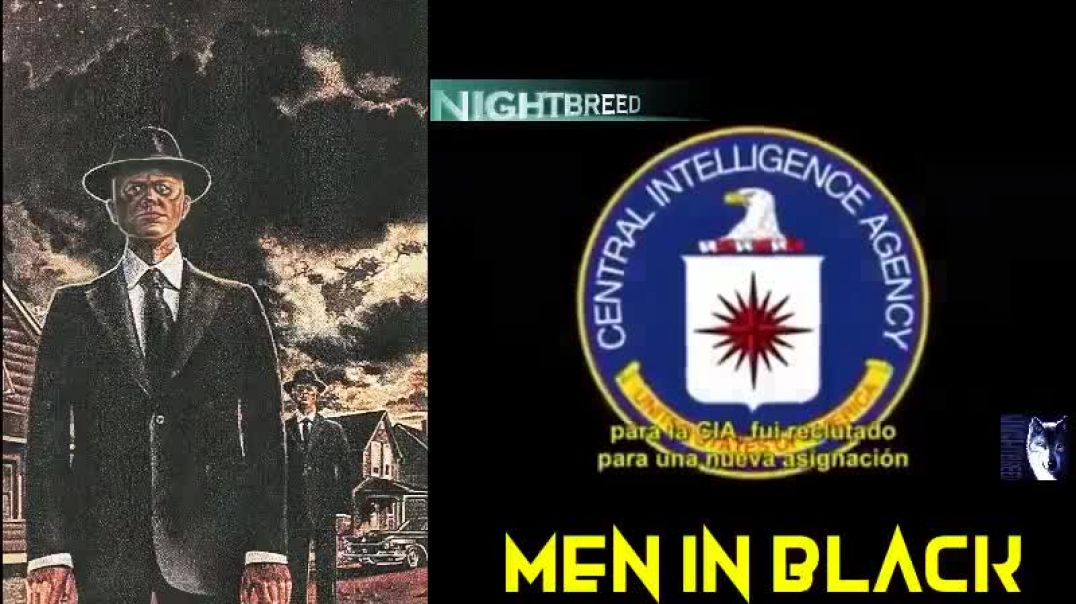 A REAL MAN IN BLACK SPEAKS OUT? WHAT HE SAYS WILL HAPPEN IN 2024 WOULD NOT SURPRISE ME