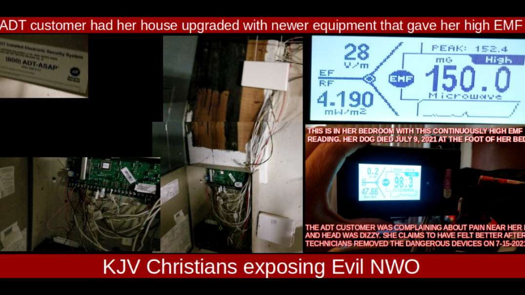 ADT customer had her house upgraded with newer equipment that gave high EMF and killed her dog