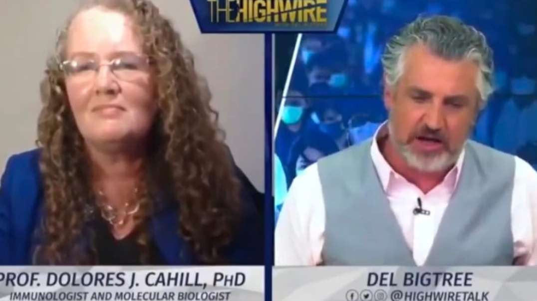 Prof Dolores Cahill full interview by Del Bigtree - The Highwire - 2020