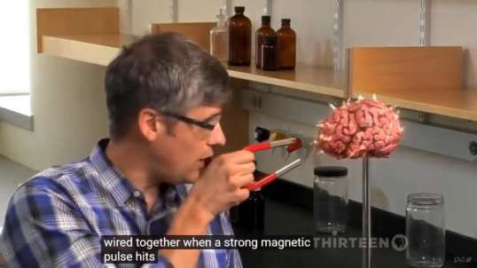 Controlling The Nervous System With Graphene Oxide