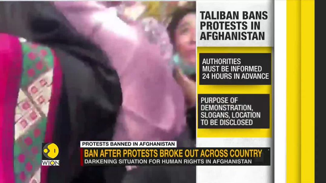 Taliban bans unapproved protests and slogans across Afghanistan _ Latest World English News _ WION