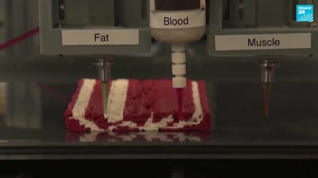 FAKE MEAT! 3D-printed fake meat: The healthier, greener future of food?