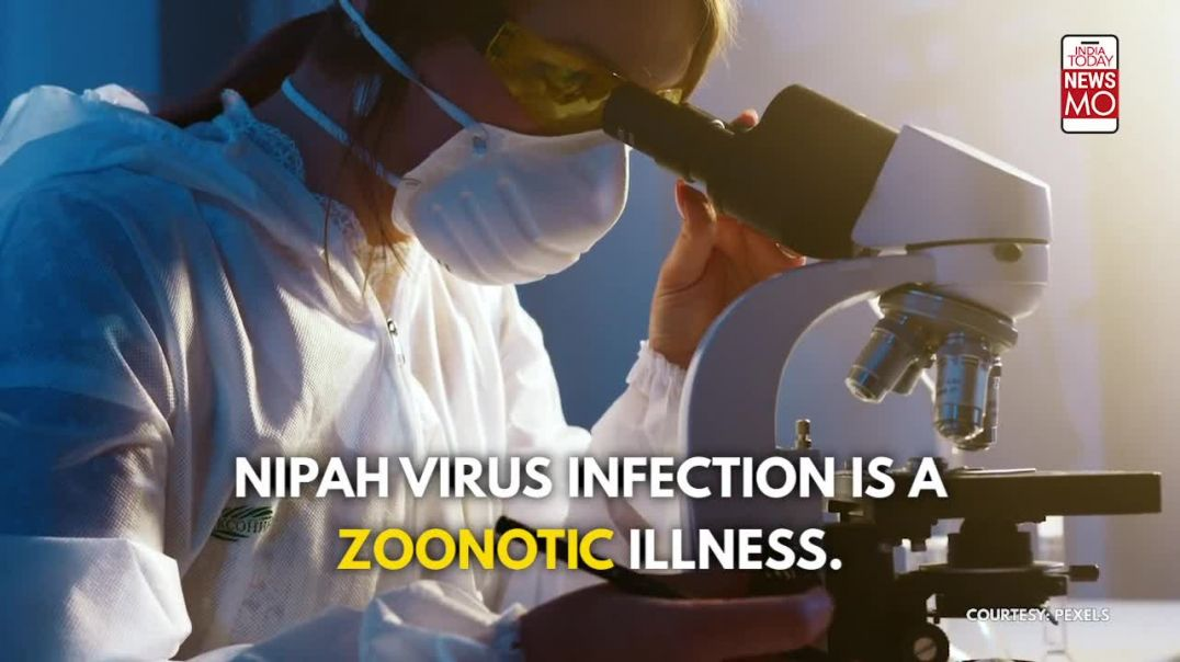 India_ A Child in Kerala Dies From Nipah Virus, epidemic behind a pandemic.
