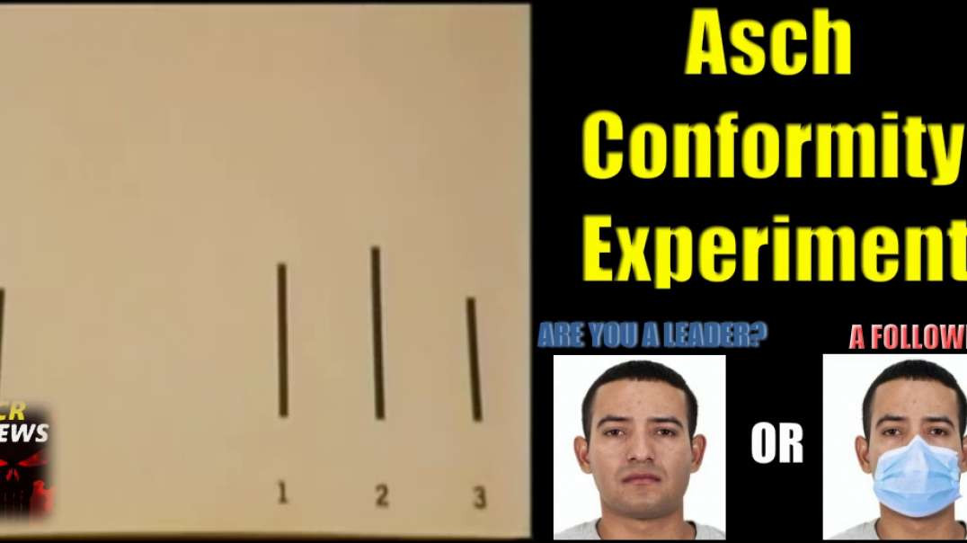 Asch's Conformity Experiment. Are you a Leader? or Are you a follower?