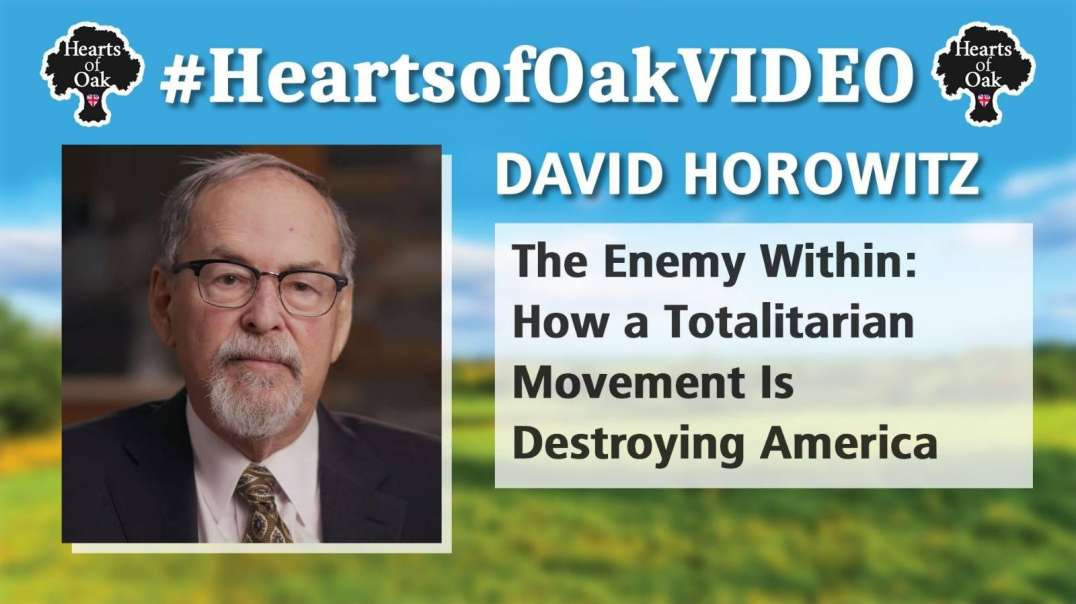 David Horowitz - The Enemy Within: How a Totalitarian Movement Is Destroying America