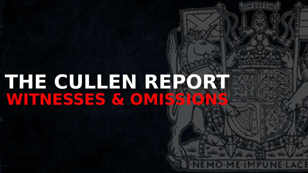 The Cullen Report - Witnesses & Omissions