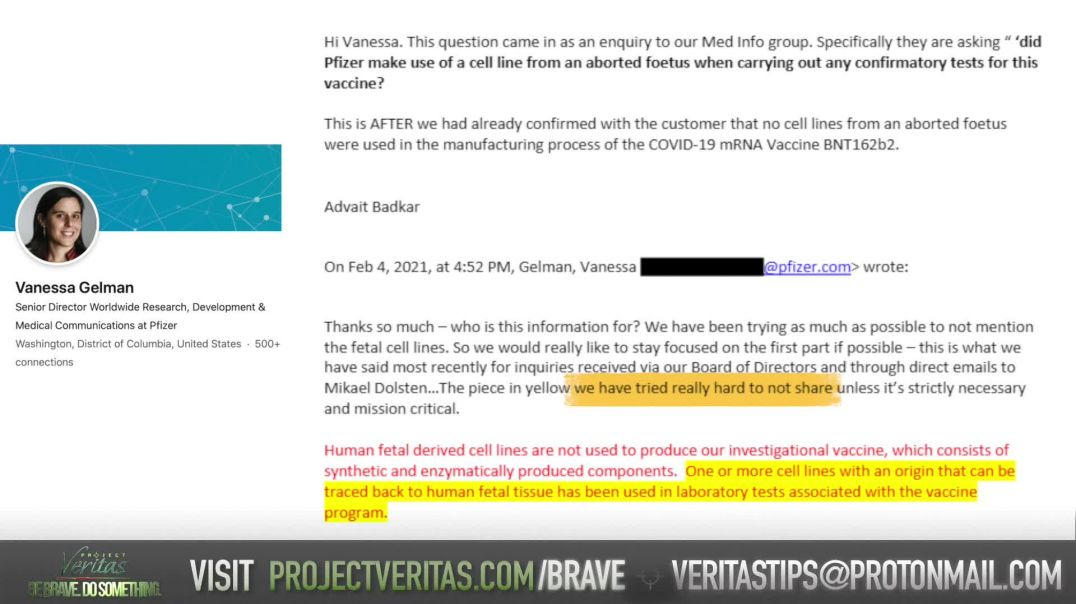 PART 5 Pfizer Whistleblower LEAKS Execs Emails EXPOSING Suppression of Covid Vax Info From Public