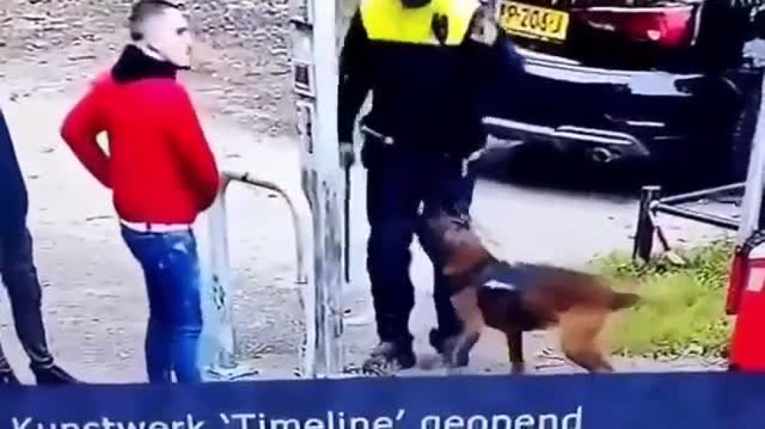 Police dog knows the officer is doing wrong so turns on him