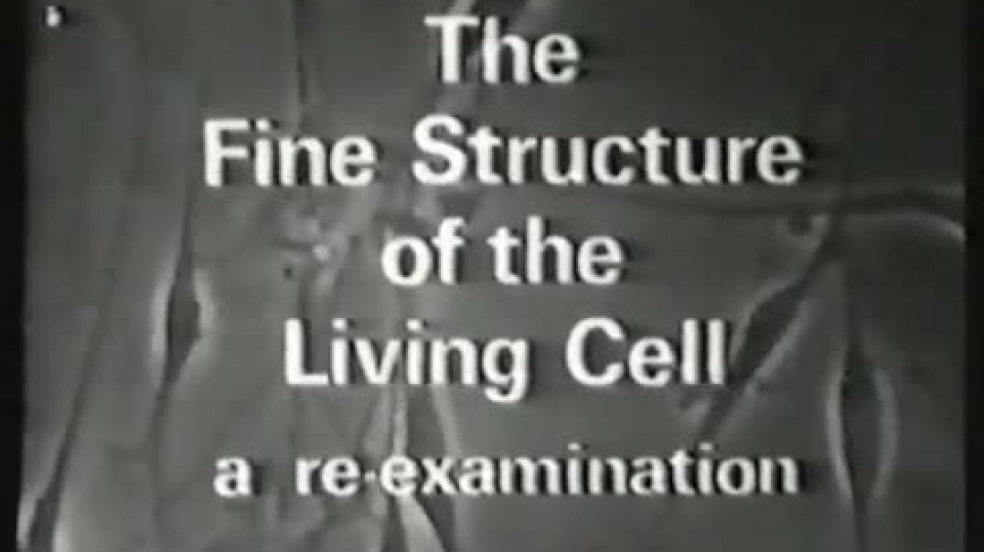 Harold Hillman Part 1, The Fine Structure Of The Living Cell (No Soundtrack)